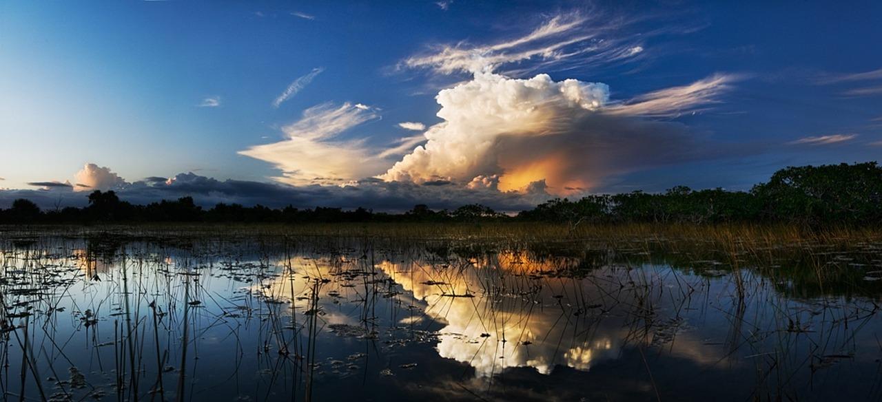 Everglades park Florida